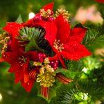 Christmas Decoration (Petr Kratochvil)